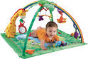 Fisher Price Muzikale Rainforest Luxe Gym