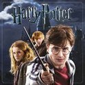 Harry Potter 2015 Square Wall Calendar