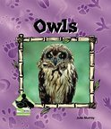 Owls Ebook