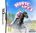 Horse Life 3