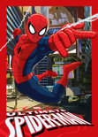 Spider-Man Speelkleed 95X133