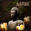 Tuinposter Buddha Nature met 6 led lampjes - 40 x 40 cm