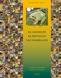 De amfibieën en reptielen van Nederland