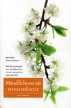 Mindfulness en stressreductie