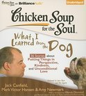 Chicken Soup for the Soul: What I Learned from the Dog: 36 Stories about Putting Things in Perspective, Kindness, and Unconditional Love