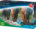 Planet Earth - Afrikaanse Olifant