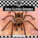 Bird-Eating Spiders eBook