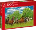 Jumbo Wilde Paarden in de Wei - Puzzel - 1000 stukjes