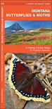 Montana Butterflies & Moths: An Introduction to Familiar Species