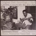 Living Country Blues Usa Vol. 4