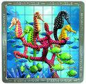 3D Mega Magna Sea Horses