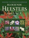 Deltas Tuinenencyclopedie Bloeiende Heesters Van A Tot Z