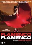Flamenco Flamenco
