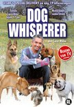 Dog Whisperer - Cesar's Special Delivery