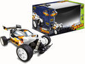 R/C outdoor Racing Buggy Speed Flare