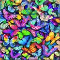 3D Magna Butterflies