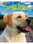 Labrador Retriever (ebook)