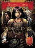 De Ridders van Fantasia 1 - Het Dromenlabyrint