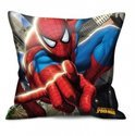 Eli Spiderman Cushion (2 designs)