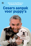 Cesars aanpak voor puppy's