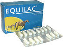 Equilac Paardenmelk - 60 Capsules - Voedingssupplement