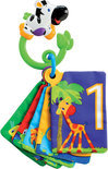 Bright Starts Jungle Fun Flash Cards
