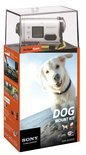 Sony HDR-AS100VD - Action Camera - Dog Kit