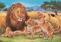 Leeuw En Olifanten