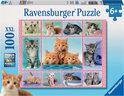 Ravensburger Schattige Katjes - Kinderpuzzel