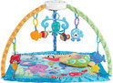 Fisher-Price Discover 'n Grow Deluxe Gym