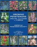 Growing Penstemons