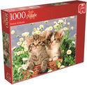 Jumbo Kittige Katjes - Puzzel - 1000 Stukjes