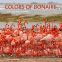 Colors Of Bonaire