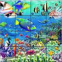 3D Magna Tropical Reef