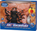 Tarantula Afstandsbediening