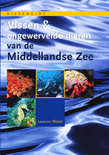 Vissen & Ongewervelde Dieren Van De Middellandse Zee