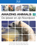 Amazing Animals - De Ijsbeer