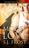 Model Love (ebook)
