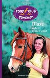 Pony Club Geheimen - Blaze en het gouden schild