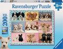 Ravensburger Snoezige Pups - Kinderpuzzel