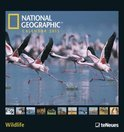 National Geographic Calendar Wildlife 2015
