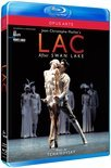Saint Louis Sym. Orchestra - Lac (After Swanlake)