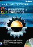 Programmeren In Excel 2003