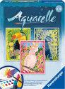 Aquarelle - Exotische Vogels