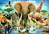 Dieren uit Kenia