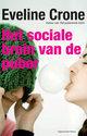 Cover voor - Het sociale brein van de puber