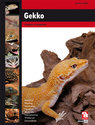 Gekko