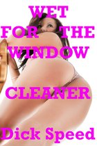 Wet for the Window Cleaner
