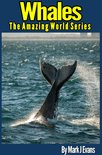 Whale Book for Kids: Stunning Photo Marine Book for Kids with Fun Information and Facts on Whales