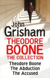 Theodore Boone: The Collection